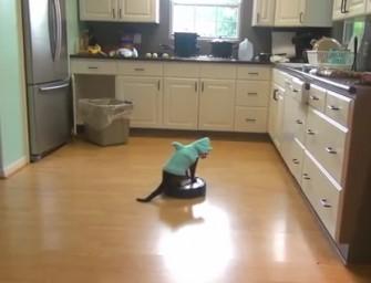 Cutest vacuum cleaner ever